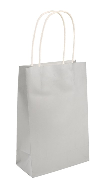 Silver Paper Party Bag with Handles
